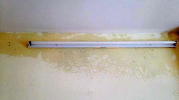Dịch vụ chống thấm tường, trần nhà